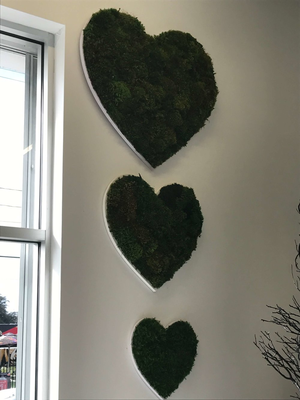 Heart Shaped Greenery at Plant the Future Shop