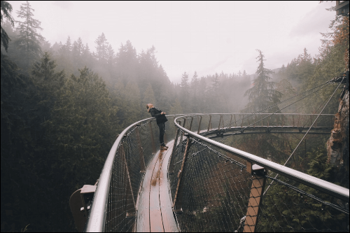 Pacific Northwest Capilano Suspension Bridge British Columbia