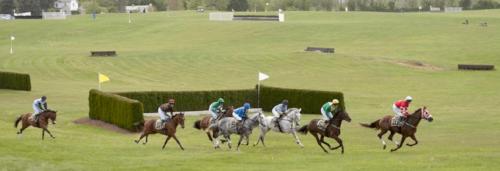 Spring Getaway - Horse Racing Middleburg, VA