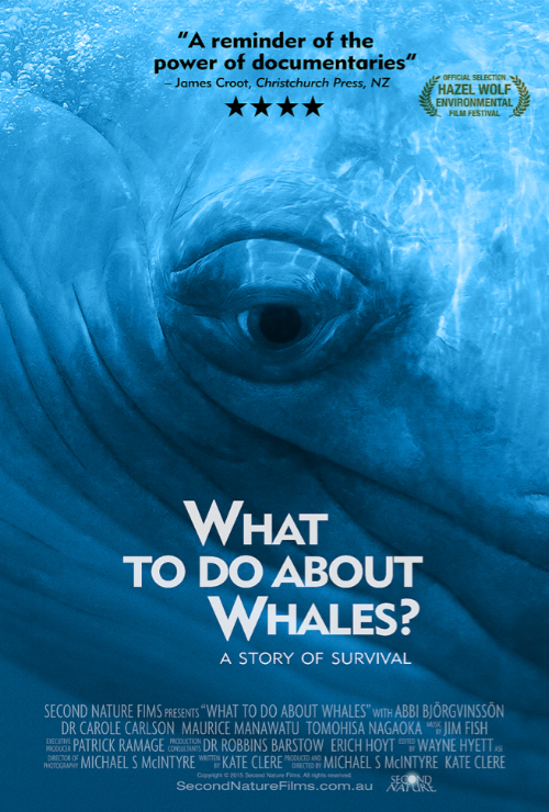 What To Do About Whales