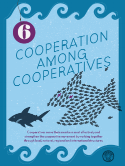 6-CooperationAmongCooperatives (1).png