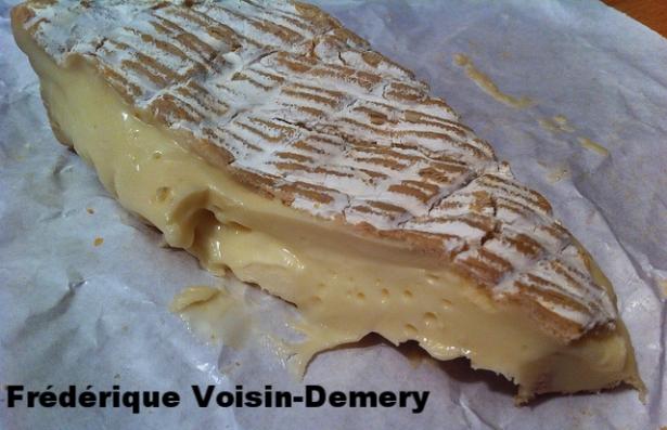 Frederique Voisin-Demery.jpg