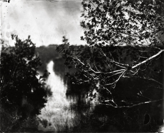 'Water Trail.' From the series Everglades. 2010. Photo courtesy of artist.