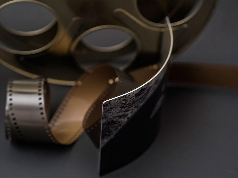 Curved-metal-portrait--one-of-the-many-products-offered-by-Orlando-Pet-Photography.jpg