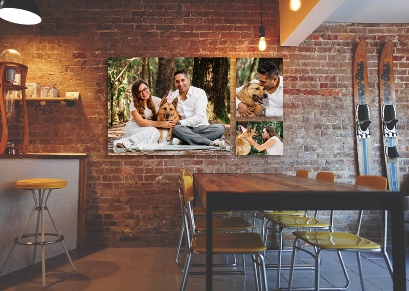 Wall-art-offered-by-Orlando-Pet-Photography-featuring-a-group-of-canvases-on-a-brick-wall.jpg