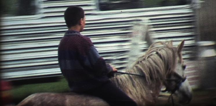 Fair Hill 1995