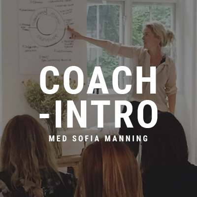 Coach_intro_boks.jpg