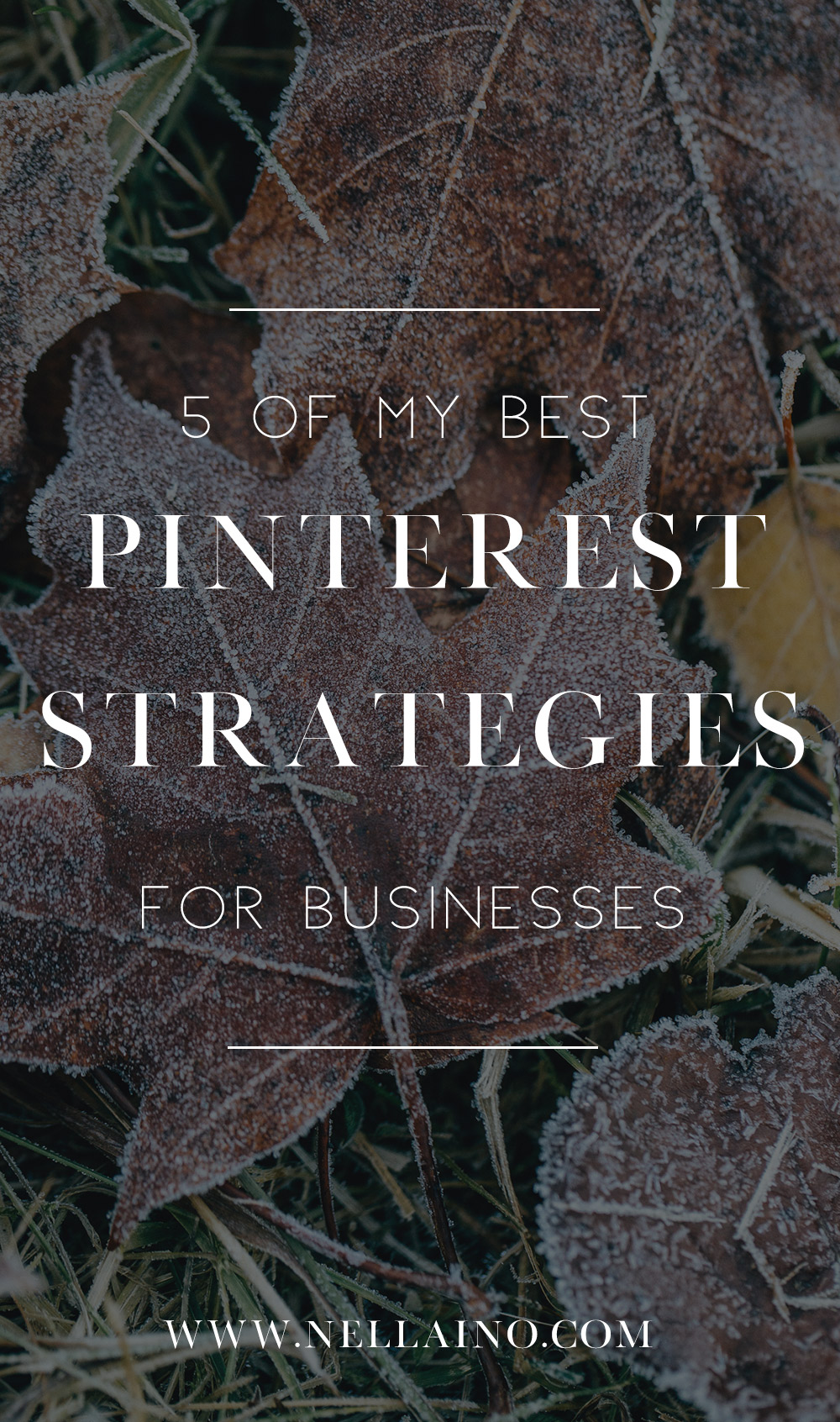 Best Pinterest strategies that I've used. Pinterest for business guru.