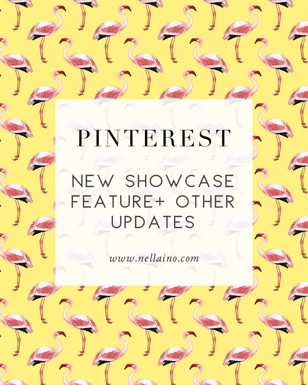 Pinterest-showcase-and-updates.jpg