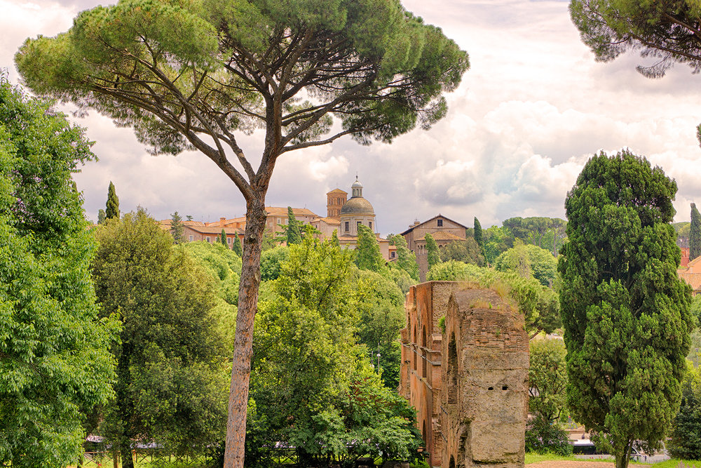VIEW FROM PALATINE HILL • Rome