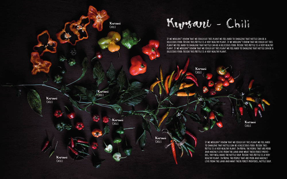 Flavours of Nepal - E-book 2018 - version 1.3-spices -1123.jpg
