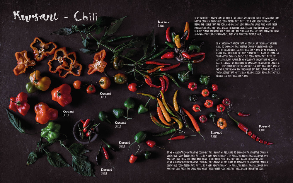 Flavours of Nepal - E-book 2018 - version 1.3-spices -1121.jpg