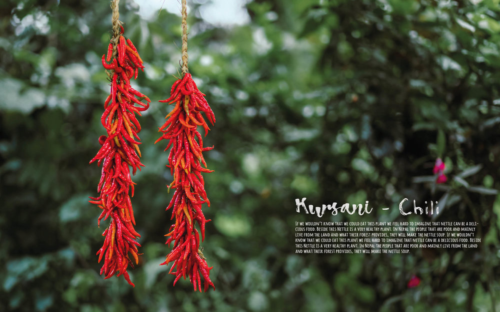 Flavours of Nepal - E-book 2018 - version 1.3-spices -1130.jpg