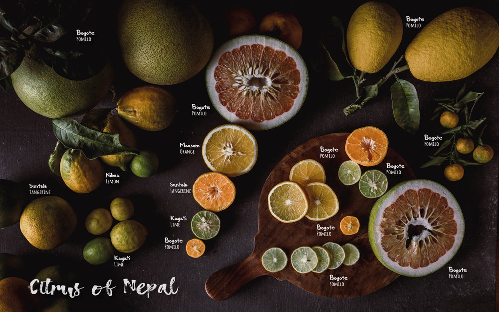 Flavours of Nepal - E-book 2018 - version 1.3-spices -1133.jpg