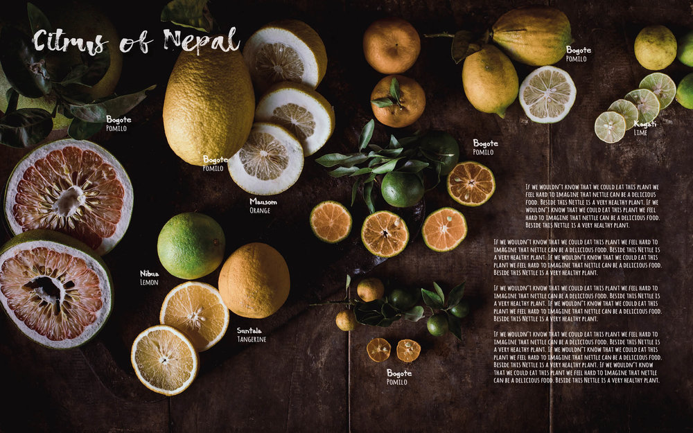 Flavours of Nepal - E-book 2018 - version 1.3-spices -1134.jpg