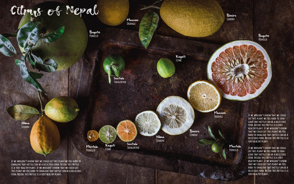 Flavours of Nepal - E-book 2018 - version 1.3-spices -1136.jpg