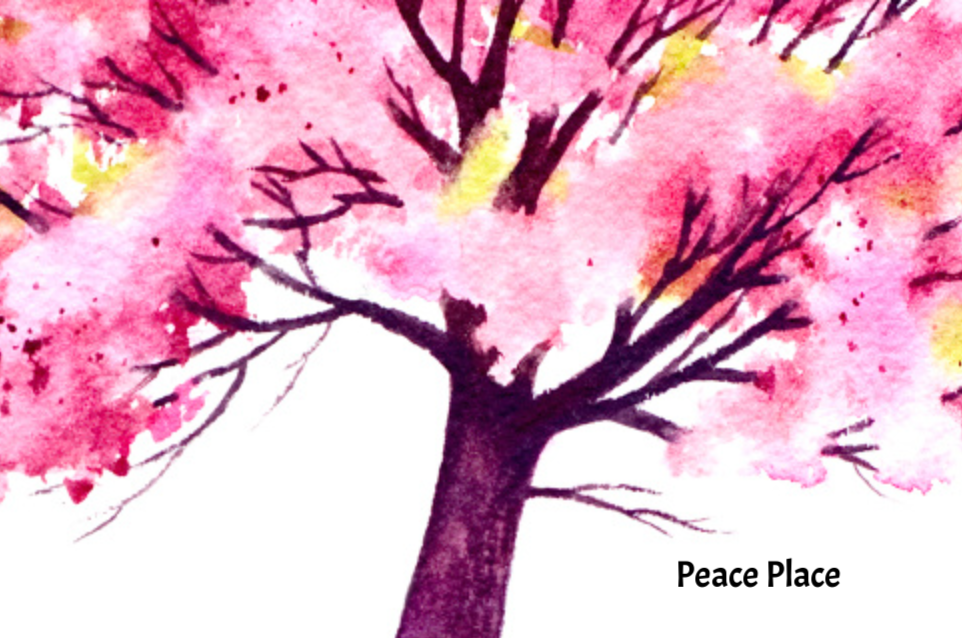 PEACE PLACE  - Serving survivors of family violence in Banks, Barrow & Jackson counties, GA