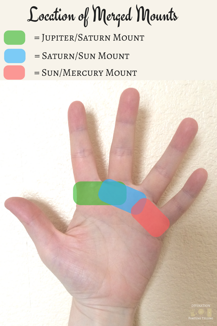 Image showing the location of mounts which appear between the fingers, known in Palmistry as merged mounts.