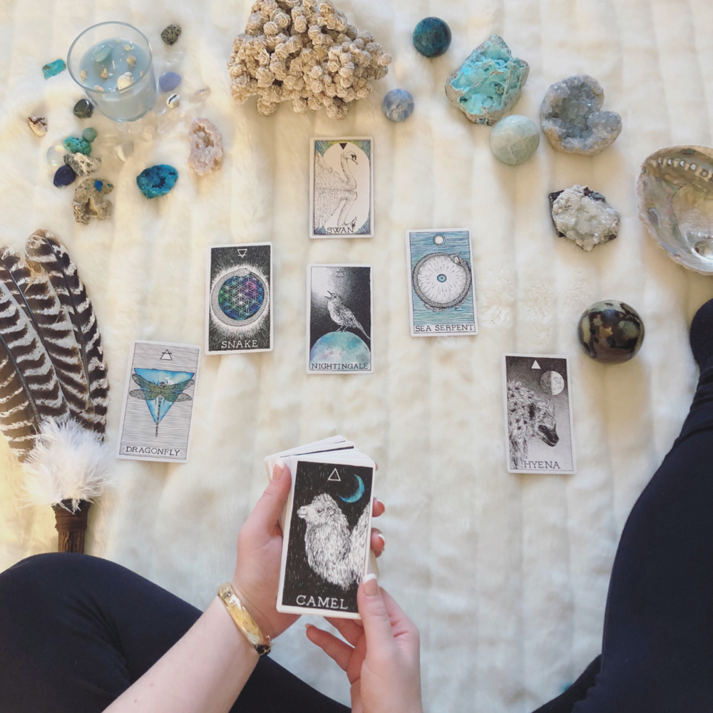 These oracle card tips apply to all types of decks, including The Wild Unknown Animal Spirit pack featured in this post.