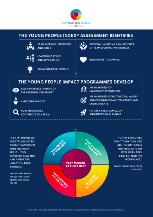 The Young People Index® Programme Summary & Infographic  -