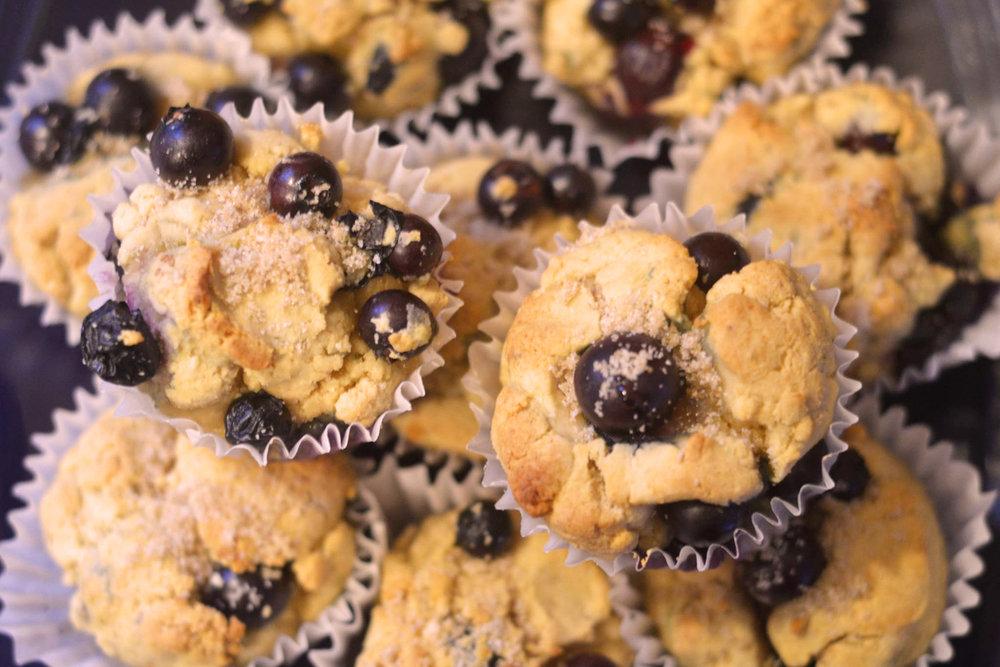 Gluten Free Pastries Muffins Food Organic Local Understory Coffee Sandpoint Idaho
