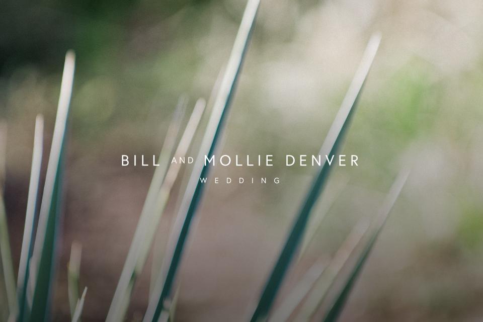 Bill + Mollie Wedding