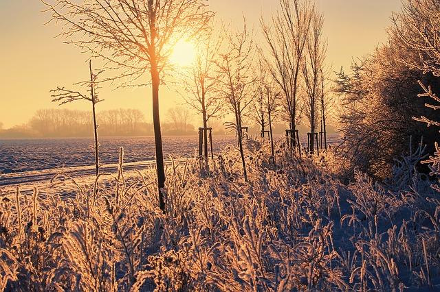 winter snow photo.jpg