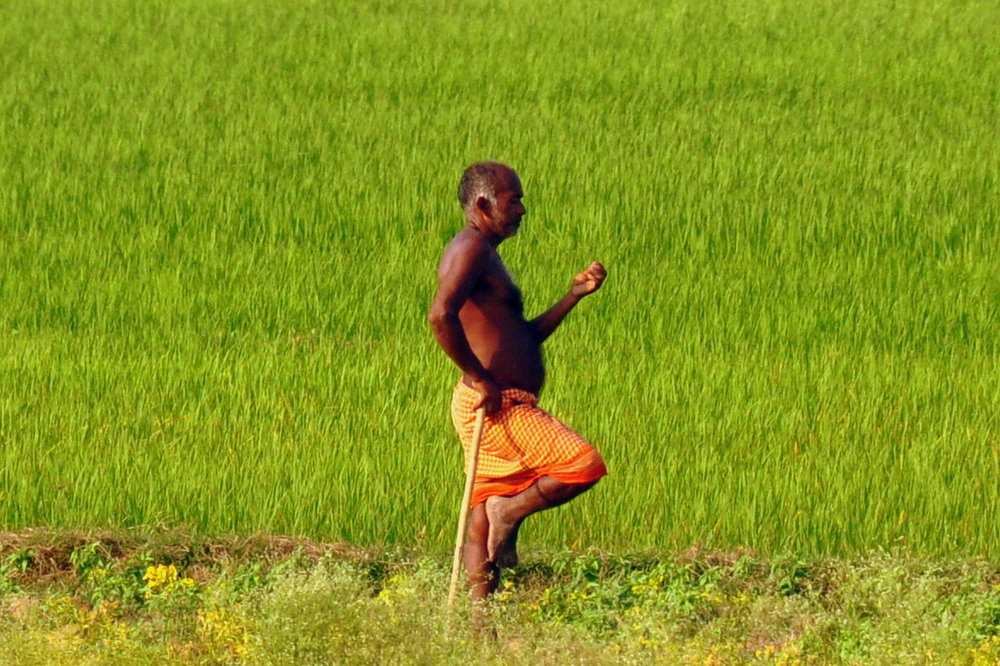 man working the fields near Bodhgaya.JPG