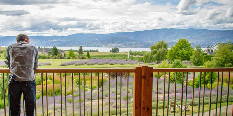 okanagan-lavender-and-herb-farm-kelowna-valley-vagabonds
