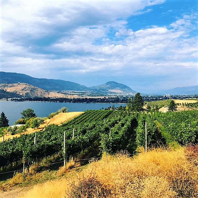 pentage-boutique-winery-penticton