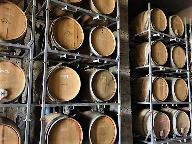 cellar2.jpg