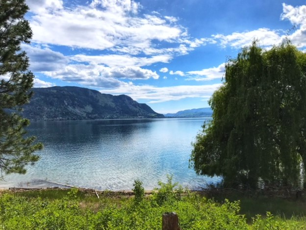 Little Shuswap