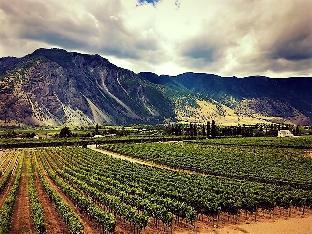 View from Corelettes Winery Keremeos.jpg