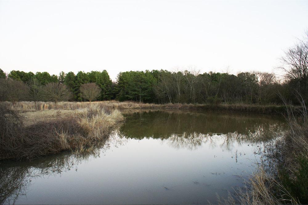 Lindale Lake 2.jpg