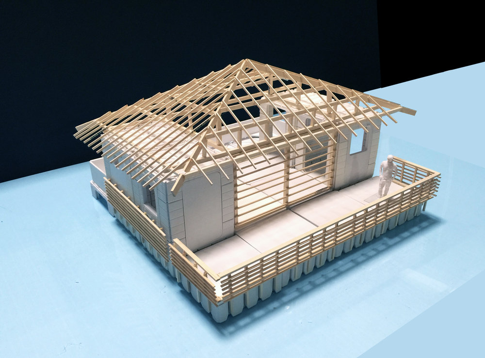 LifeArk Amazon Typical Dwelling Model