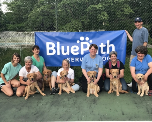 BluePath Volunteers