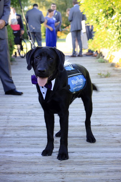 Abby & Phil's Handsome Ringbearer.jpeg