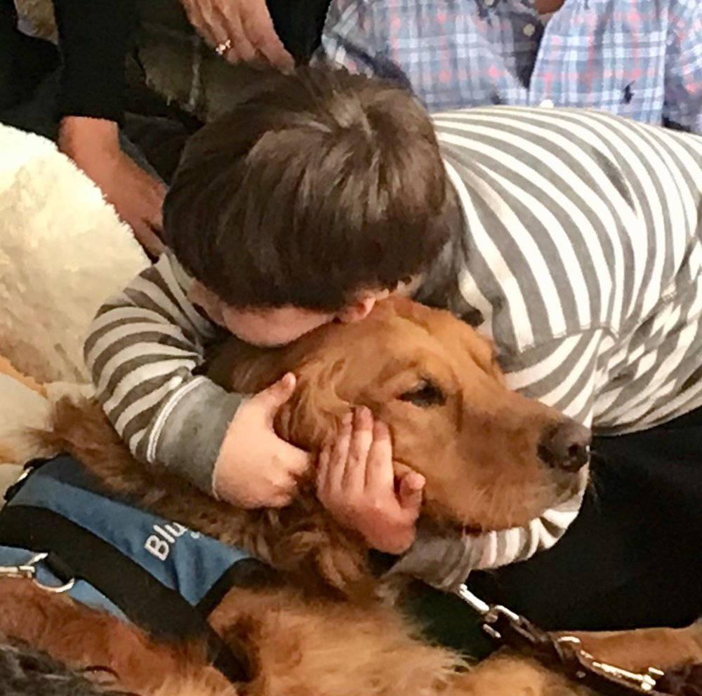 Future service dog Lakota receives a hug from a student at Springhurst Elementary School.
