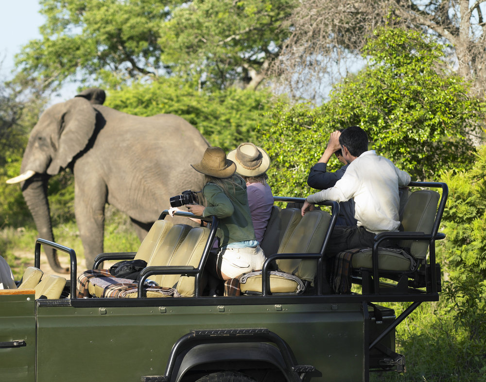 safari-africa-group.jpg