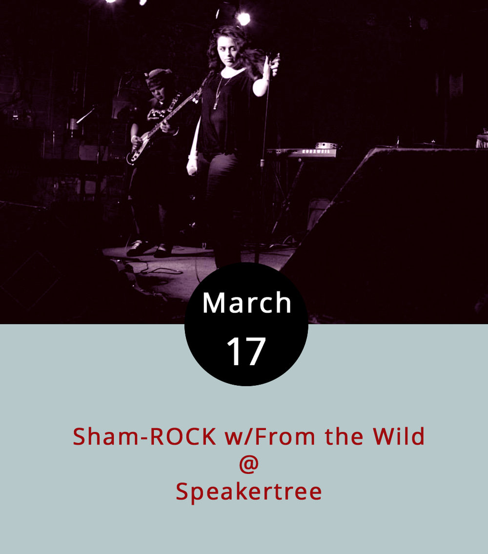 Over at Speakertree (522 5th St.) – the only record shop in downtown Lynchburg – they'll be getting into the St. Paddy's spirit with a line-up of local indie bands, including headliners  From the Wild . Doors are at 6:30 p.m., there's a $5 cover, and there are three other acts on the bill: Paperback, L.A. Dies, and Wesley Montgomery Music. Call (434) 485-8262 for more info, or click  here .