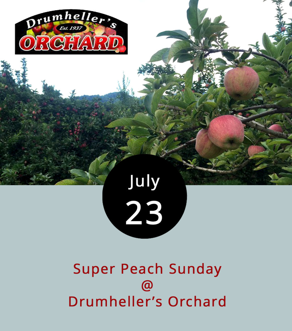 Like cherries, nectarines, plums, and, well, so many other stone fruits, peaches are great when they're in season and not so much when they're not. That's something they know a little about at Drumheller Orchards (1130 Drumheller Orchard Ln.) in Nelson Country. The fifth-generation family farm grows lots of peaches and celebrates the harvest with a Super Peach Sunday. The event features ice cream, cobblers, jams, jellies, butters, and, of course, lots and lots of peaches. There will be music by the Bennie Dodd Band, kids activities, and food provided by the local Ruritan Club. Admission is free for the event, which runs from 1-5 p.m. Call (434) 263-5036 or click  here  for more info.