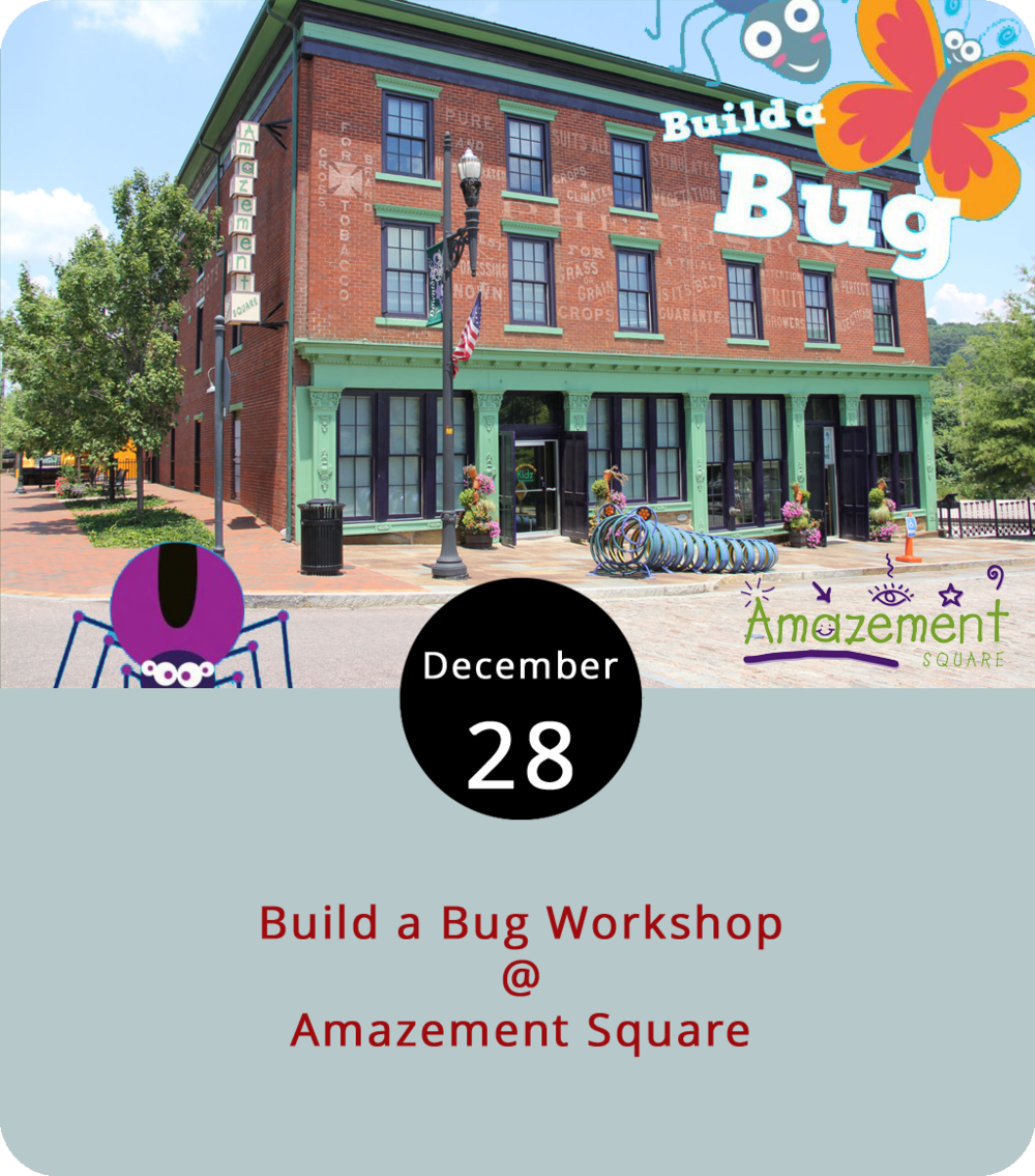 Among the many things Amazement Square (27 9th St.) is known for in Lynchburg are the bugs, which is fairly obvious if you happen to be passing by the children's museum and playspace. We're referring to several prominent outdoor sculptures, which include a centipede-like bike rack out front and a series of bugs climbing up the sides of the building. The infestation goes much deeper this afternoon, as Amazement Square gears up for its big New Year's Eve afternoon celebration for kids. Today from 4-5 p.m., kids will have a chance to craft the creepy crawlers that will be part of the big 3 p.m.  bug drop  on the 31st. Local kids will create two bugs from materials provided by Amazement Square – one for the New Year's event and one to take home. The project is free with museum admission; if you are not a member, it's $9 to visit. For more information, click  here  or call (434) 845-1888.