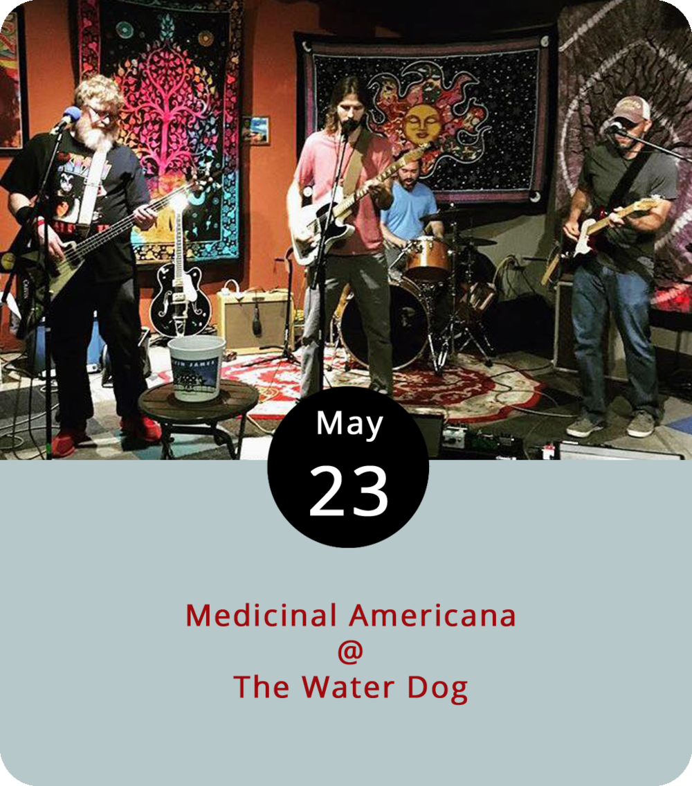 "The Roanoke-based foursome Medicinal Americana have made Lynchburg a regular stop on their rounds of regional music venues, and this evening they'll be checking in at the Water Dog (1016 Jefferson St.) right around dinnertime for a set or two of rootsy rock and roll. As their name suggests, the band lean toward the Americana end of the spectrum, which in this case means covering tunes by the likes of Ryan Adams, the Black Crowes, Tom Petty, Neil Young… ""Ya know,"" as they put it, ""the good stuff.""  They also do some original tunes. The playing begins at 6 p.m. Click  here  to see the Water Dog menu,  here  for more info on the show, or call (434) 333-4681."