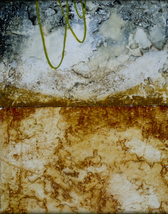 Terrafirma 2001 , encaustic and oil on panel 30 x 21 inches  Among Collection at Leitner Chiropractic Portland