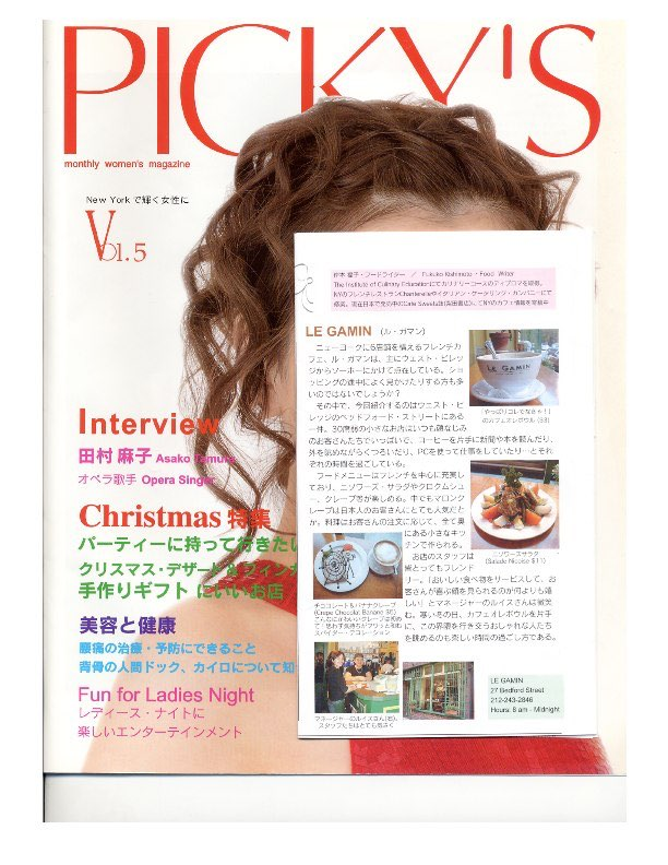LG-pickysjapanesemagazine.jpg