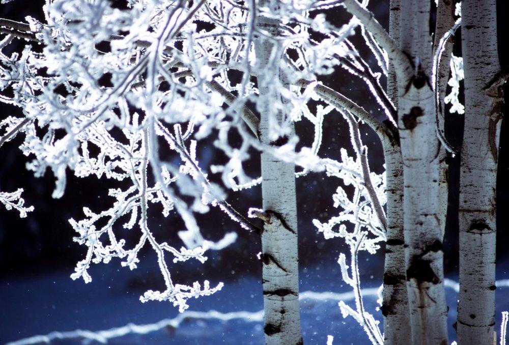 Wintermärchen-ball - Im Winter wird jedes Lächeln zum hellsten Licht ( Monika Minder )Mit diesem wunderschönen Spruch möchten wir Sie zu unserem Wintermärchenball am 16.November.2019 begrüßen. Wie jedes Jahr erwartet Sie eine warme und herzliche Atmosphäre. Mit einem fantastischen Showtanz, leckerem Catering und warmen Getränken werden wir Sie wieder einmal verzaubern.Datum: Sa, 16.11.2019Uhrzeit: 19:00 UhrEintritt: 25,00€ p.POrt: Tanzschule Melissa WalterKartenreservierungen ab sofort möglich!Anzahl der Karten ist begrenzt.