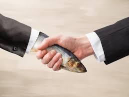 Dead Fish.jpeg
