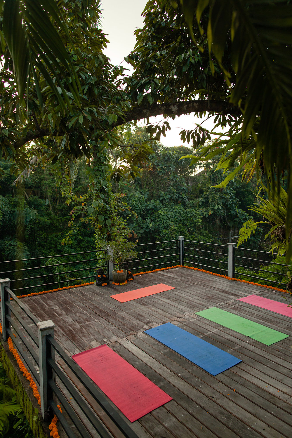 YOGA RETREAT - _coming soon