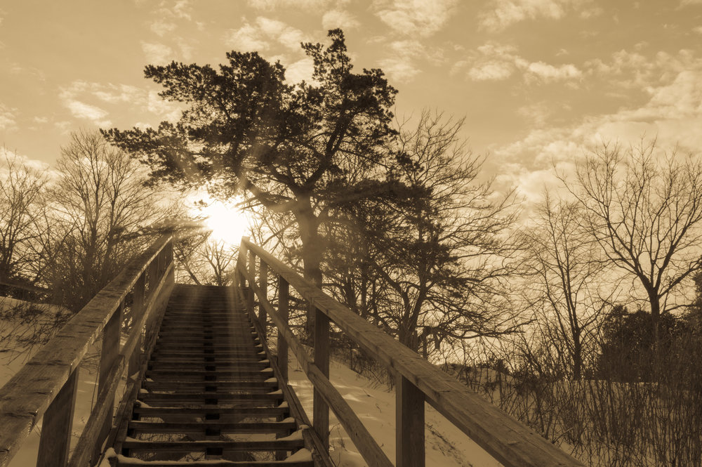 Up Pioneer Park Staircase