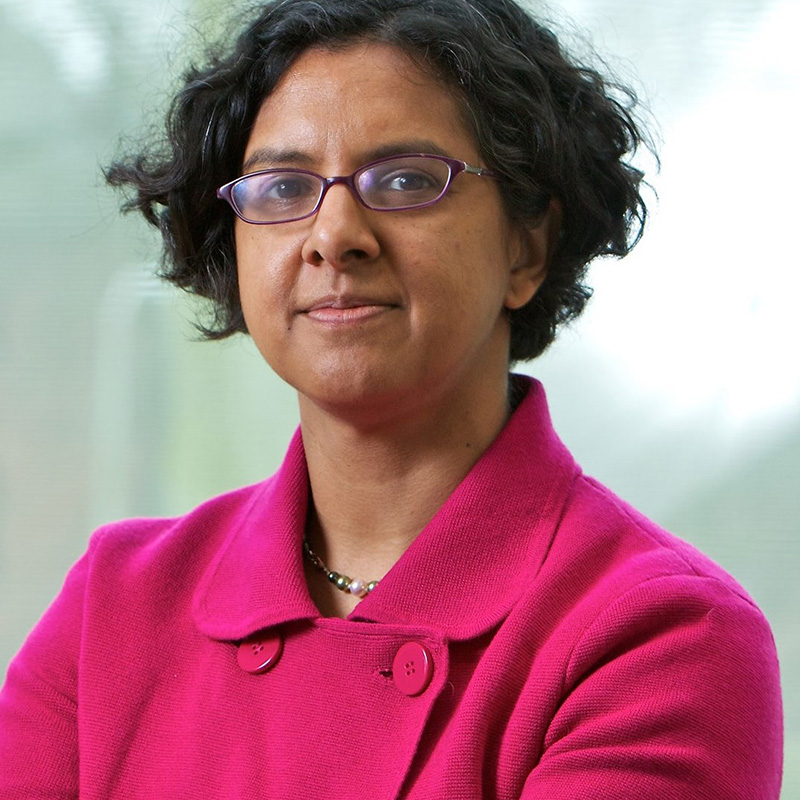 Anita Ramasastry - Global Governance and Norms; Finance, Trade and Investment; Corruption and Remedy